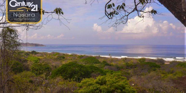 Guiones_View_Surf535ac2143c735