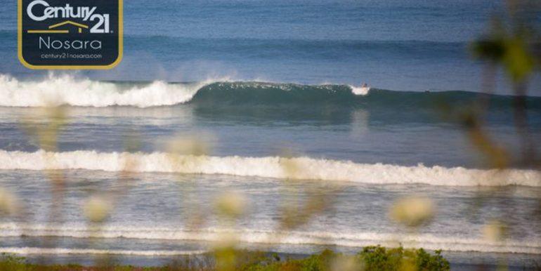 See_the_surf_Nosara535ac2266cf35