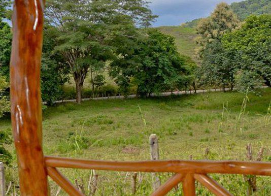 backyard_view_1374524069