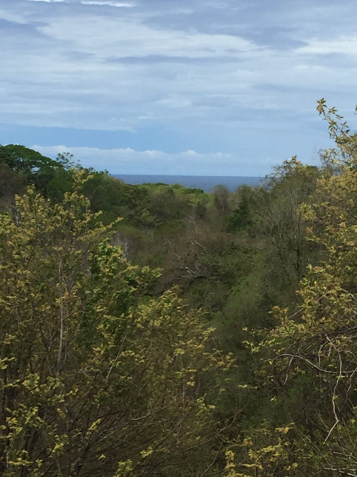 Affordable lot with ocean and valley views!