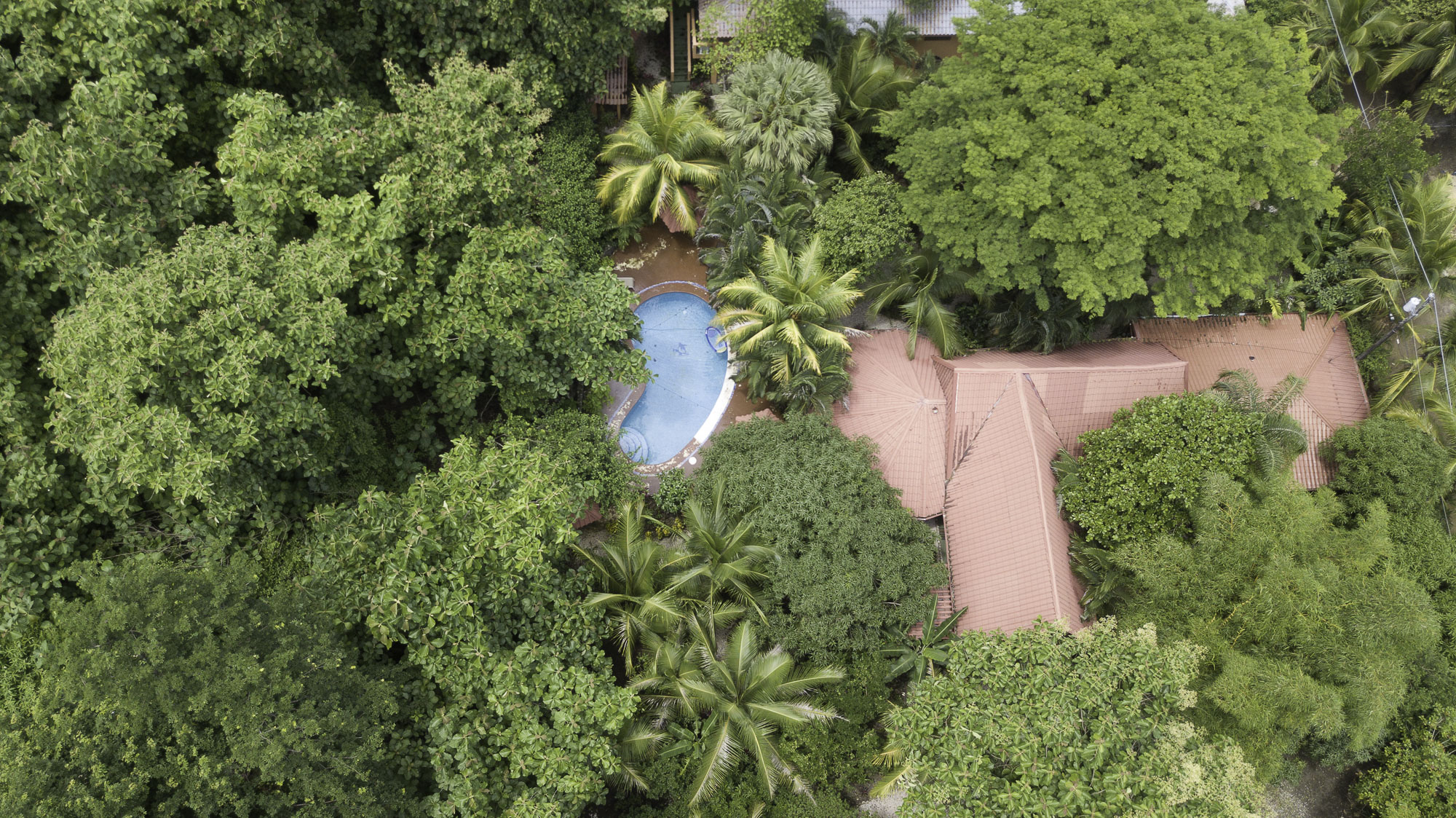 Teak Pacific- Income Producing Property, Priced To Sell