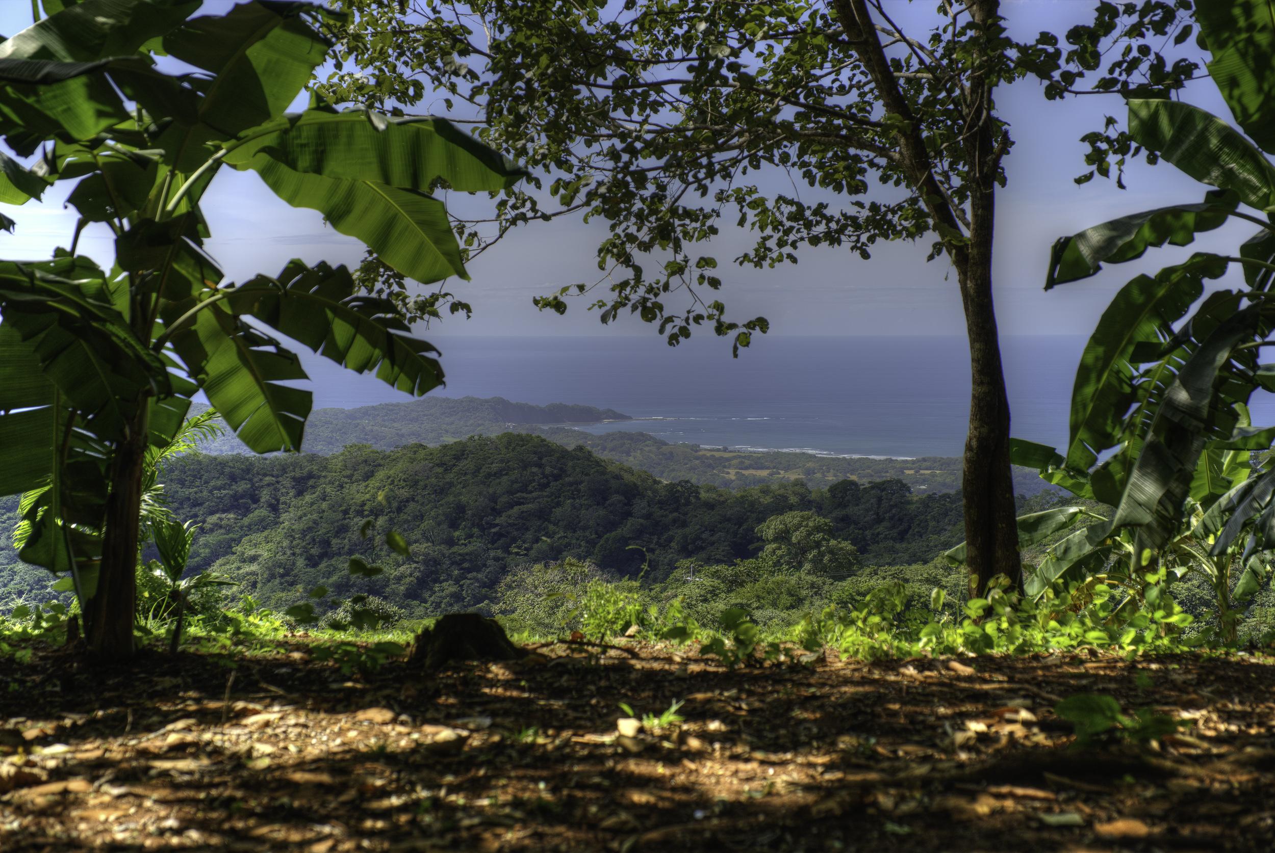 Stunning Ocean View Lot in Bosque Verde