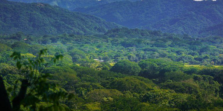 Zoom Shot Looking At Nosara